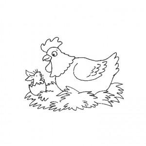 chien-oeuf-de-poule