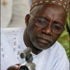Souleymane CISSE