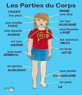Anatomie-soninke
