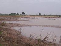 fleuve-senegal-decrue.jpg
